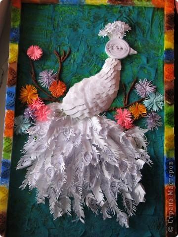 Это первая моя картина с белой птицей и радужной рамкой.