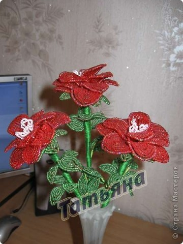 Красные розы. фото 1