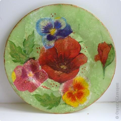 неизвестный для меня цветок с ягодками фото 2