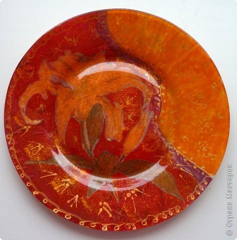 неизвестный для меня цветок с ягодками фото 3