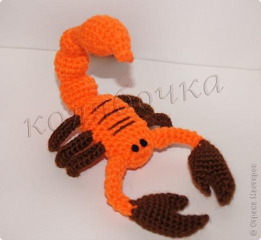 Вязание крючком Скорпион