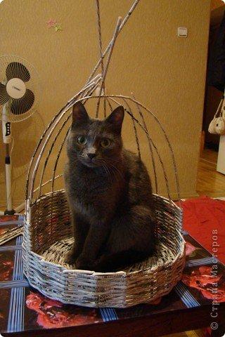 Корзинка для кошки, плетеная из газеты фото 3