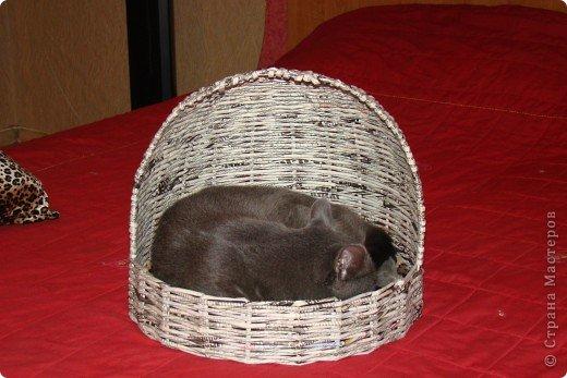 Корзинка для кошки, плетеная из газеты фото 1