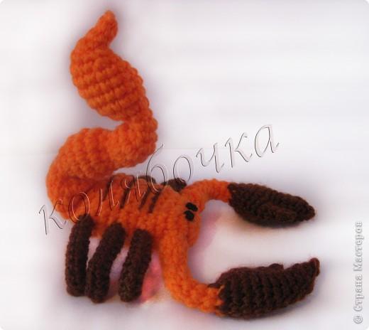 Скорпион.За описание благодарность Маришке Борисовой. фото 3