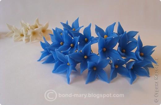 Декор предметов Лепка Цветочки из холодного фарфора Фарфор холодный фото 3
