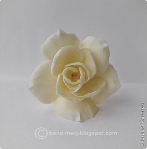 Декор предметов Лепка Цветочки из холодного фарфора Фарфор холодный фото 8