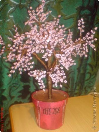Мое первое дерево из бисера, надеюсь не последнее.