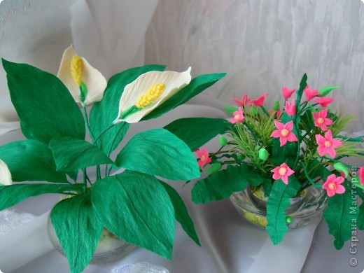 Очень нравятся маленькие цветочные букетики. И вот перед вами мои робкие попытки по их созданию. фото 1