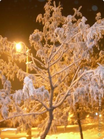ночь .зима .куржак фото 7
