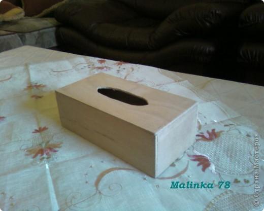 Салфетница (выполнена хной) Мастер-класс фото 3