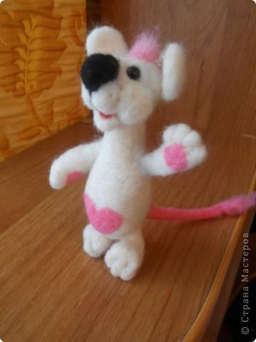 Здравствуйте! Давно хотела сделать белую мышку, такую как у Дватаи или Светульки. Но , ничего похожего у меня не вышло, вот такой зверь невизвестной науке породы, но довольно-таки симпатишный! фото 1