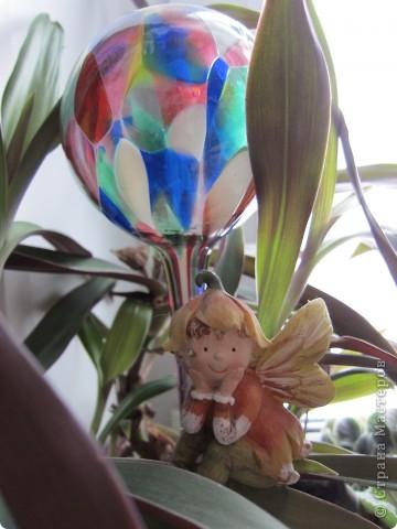 Поилочки для растений фото 4