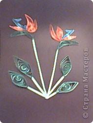 Цвветок в технике квиллинг
