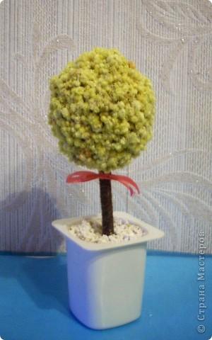 Деревце из цветков лекарственного растения фото 1