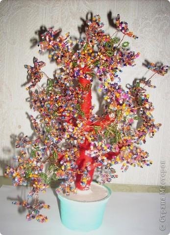 Деревце из цветков лекарственного растения фото 2