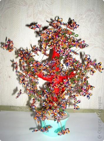 Деревце из цветков лекарственного растения фото 3