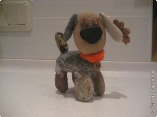 Мой пёсик. фото 1