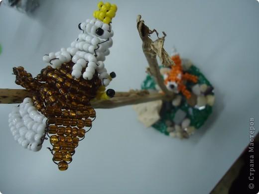 Хитрый лисенок и... фото 5