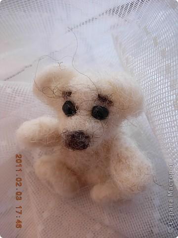 Мишутка-малышка фото 3