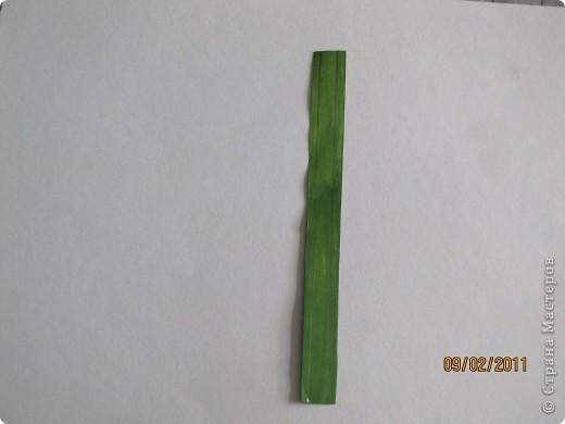 Как и обещала вторая часть МК гиацинт. фото 11