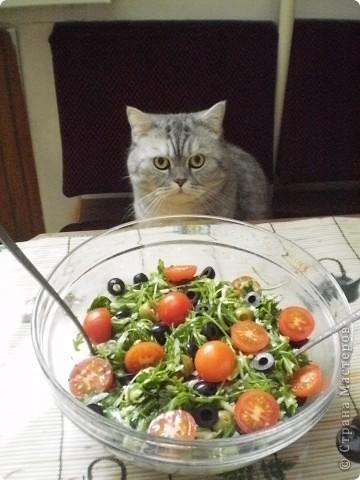Вот так он выглядит- Полезный,легкий,вкусный и простой! Вообще-то это Итальянский салат с Рукколой,но рецепт мне дали девочки-модели,которые работают в Доме Моды,они благодаря этому салатику-не поправляются!!! Вот и я,работая много лет в этом Доме,устраиваю себе разгрузочные дни И ХОЧУ рецептом этого салата поделиться с вами!!! фото 7