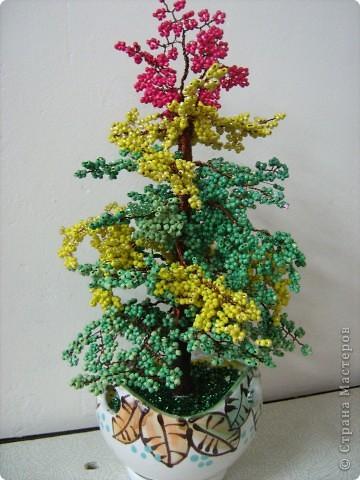Осіннє дерево. фото 1