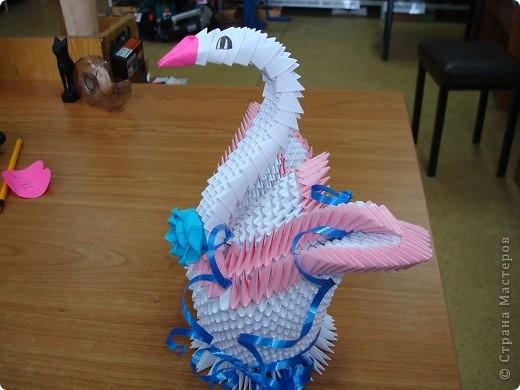 и еще лебеди фото 3