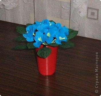 На эти цветочки использовала то,что на данный момент было дома. Листья из бутылок пластиковых,покрашены гуашью,цветки из гофрированной бумаги,на проволоке,пластиковый стаканчик.Вот что получилось.