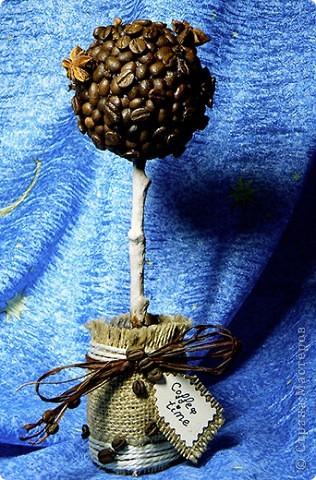 Кофейное деревце и бутылка для кофейного напитка ;) фото 4