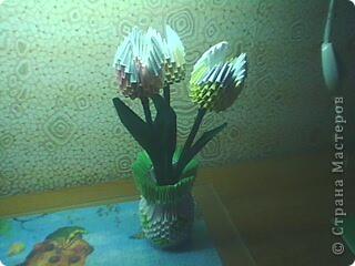 Ляпота. фото 1