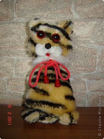 Кошка Тигровая. фото 1