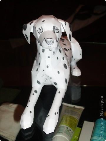 Dalmatian Художник Katsuyuki Shiga фото 10
