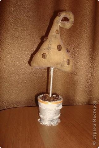"""Захотелось """"вырастить"""" кофейное деревце, такого по-моему не было фото 4"""