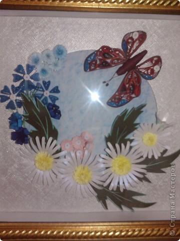Бабочка и ромашки фото 2