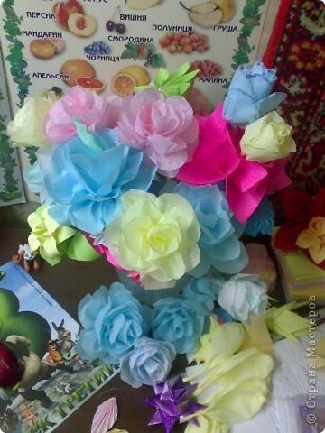 домашний цветочек гиацинт фото 3