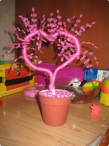 наши деревья сердечки близняшки!!!! фото 3