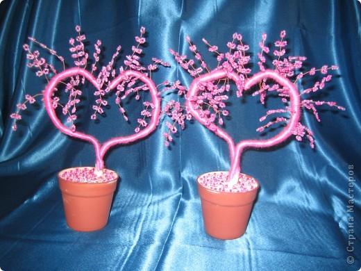 наши деревья сердечки близняшки!!!! фото 1