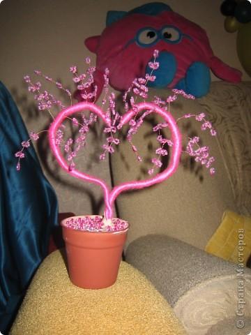 наши деревья сердечки близняшки!!!! фото 2