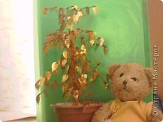 Моё первое дерево!!!
