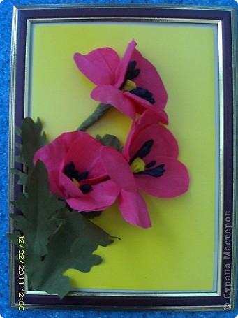 маки. Попробовала сделать цветы из гофрированной бумаги фото 1