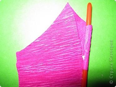 Чтобы сделать розочку из гофрированной бумаги, нам понадобится: бумага, ножницы, клей ПВА, спица или зубочистка фото 5