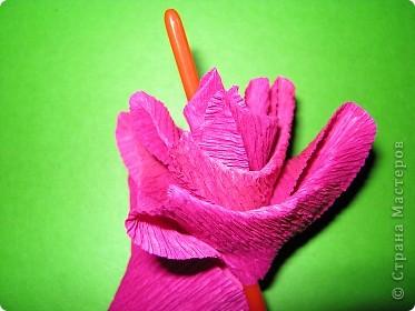 Чтобы сделать розочку из гофрированной бумаги, нам понадобится: бумага, ножницы, клей ПВА, спица или зубочистка фото 7