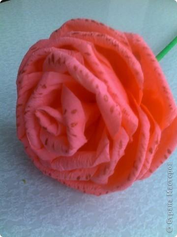 Получили задание в детском саду-нужно было сделать или купить два цветка на палочке. Дети будут учить танец к 8 Марта, а в ручках будут держать цветочки.Купить- это, конечно, проще, но ведь у нас  СТРАНА МАСТЕРОВ. Вот я  и взялась за дело, пересмотрела множество цветов и вариантов изготовления и остановилась на розочках. фото 2