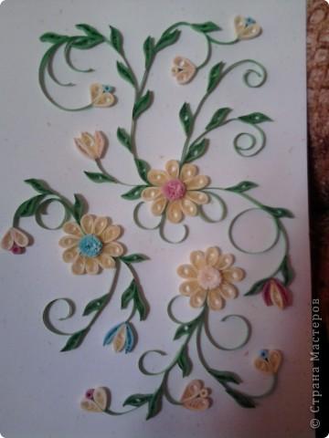 Вот и мои цветочки :) фото 1