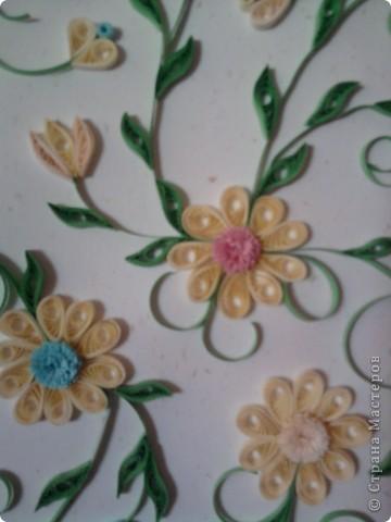 Вот и мои цветочки :) фото 2