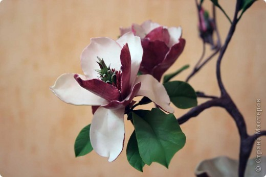 Хочу всех поздравить с наступающим Днем влюбленных! Пусть в душе всегда будет весна, а в сердце - любовь! фото 1