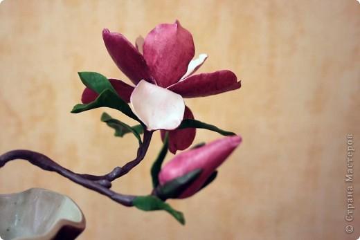 Хочу всех поздравить с наступающим Днем влюбленных! Пусть в душе всегда будет весна, а в сердце - любовь! фото 3