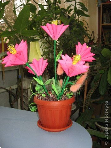 Вдохновленная работами Эрны, я решила попробывать сделать подобные цветы. Получилась такая смешанная техзника Оригами (кусудама) и квиллинг. Цветы выпилняла по МК http://stranamasterov.ru/node/18223 фото 1