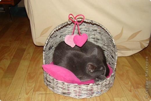 Сшила матрас, подушку и валентинки из велюра с поролоном. фото 2