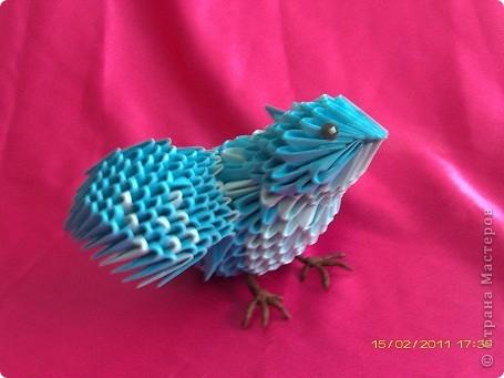 синяя птица фото 1
